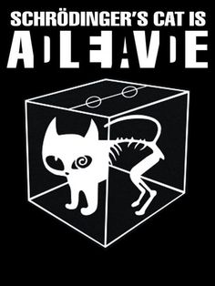 cat-dead-alive